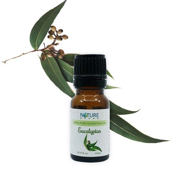 Tinh-dau-khuynh-diep-eucalyptus-essence-oil