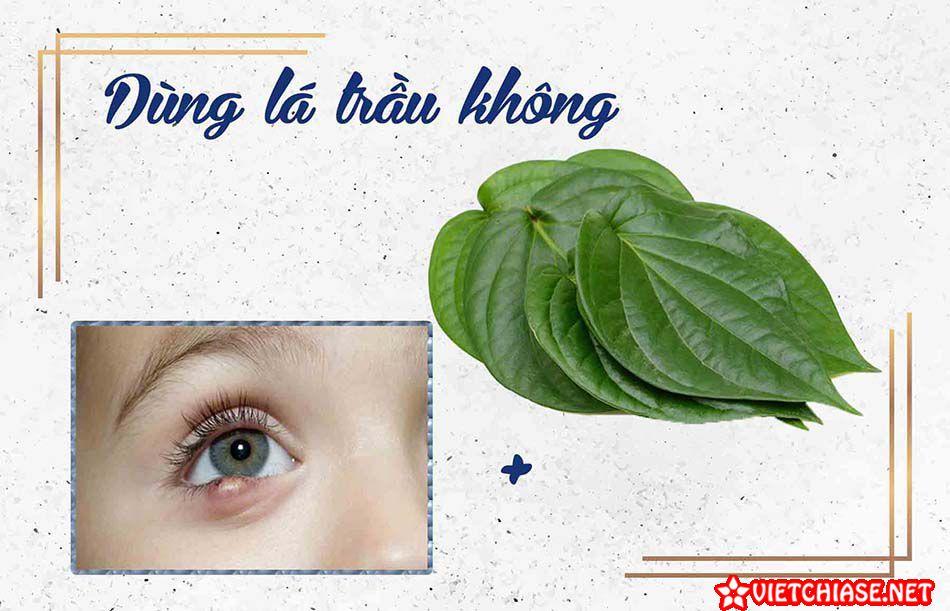 Cach-chua-leo-mat-bang-la-trau-khong